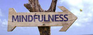 Mindfulness: o que isso tem a ver com você?